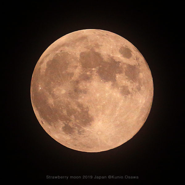 Strawberry moon 2019 Japan (c)2019 Kunio.Osawa 大沢くにお