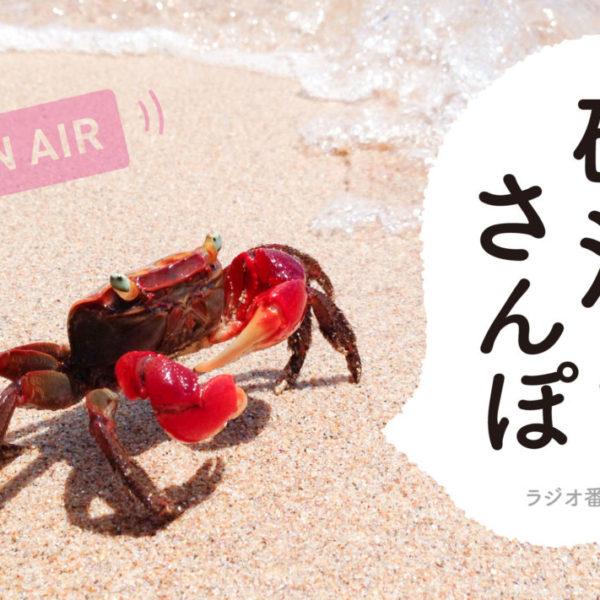 FMラジオ番組砂浜さんぽ
